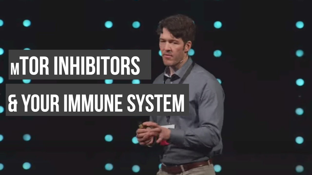 mTOR & Your Immune System, Viral Replication