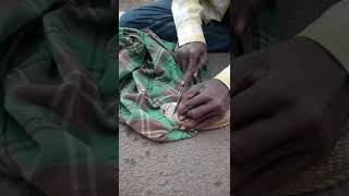 Removing Pearl from Snake Head | Snake Stone | Indian Cobra Pearl | Dangerous Nagamani Removing