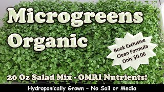 Microgreens | Best Organic Grow Yet - Salad Mix (see description)