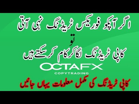 review-copy-trading-octafx-/-octafx-copy-trading-app-tutorial