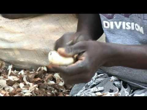 Building African Schools