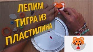Лепим ТИГРА из пластилина| Лепка животных из пластилина