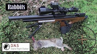 Rabbit control Artemis P15 & Digital Night Stalker style