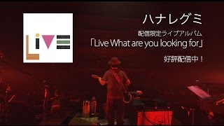 ハナレグミ - 「Tour What are you looking for」@NHKホール(ダイジェスト)
