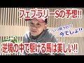 【わさお】フェブラリーステークスの予想!!【競馬予想】