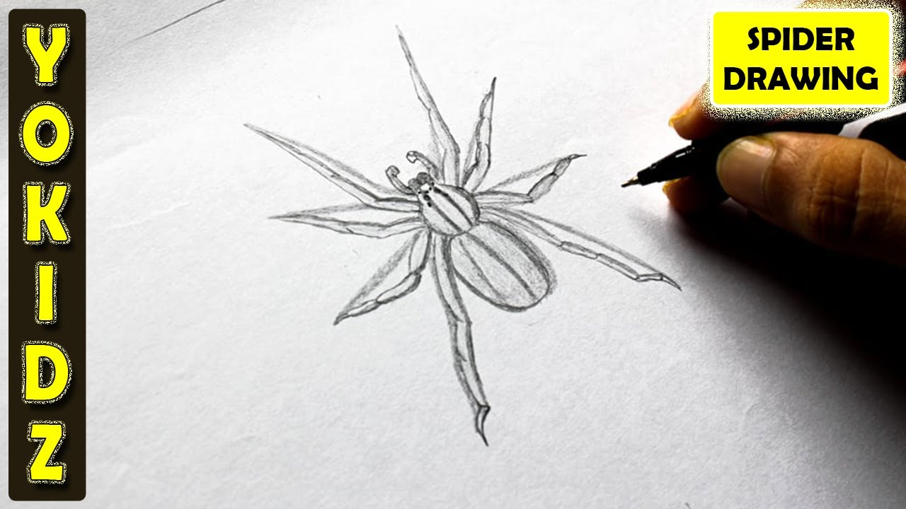 Uncategorized Draw Spider how to draw a spider youtube