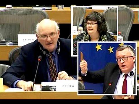 Money going astray? No false reporting, Commission rep tells Stuart Agnew MEP