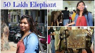 50 Lakh Elephant - Cauvery Emporium Mysore | JFC Vlog 11