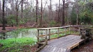 Houston Arboretum and Nature Center, Hiking trails..