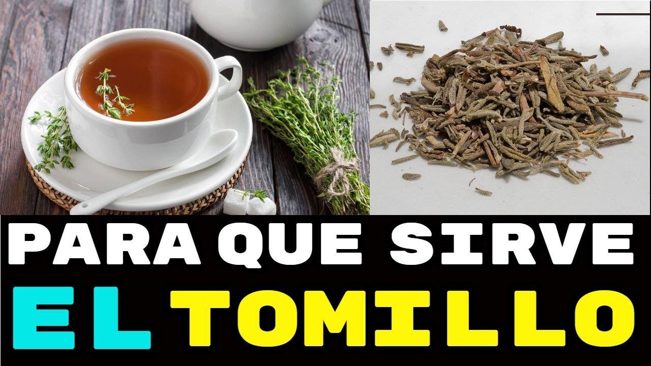 Propiedades Y Beneficios Del Tomillo Una Planta Medicinal Increíble Youtube