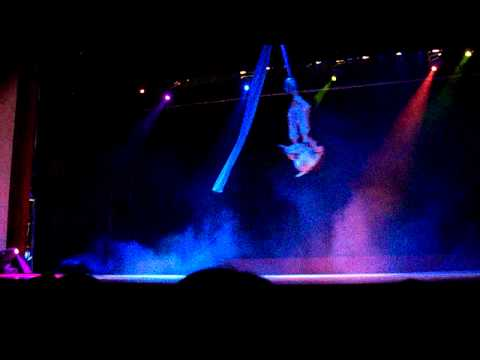 flying high at the shanghai circus