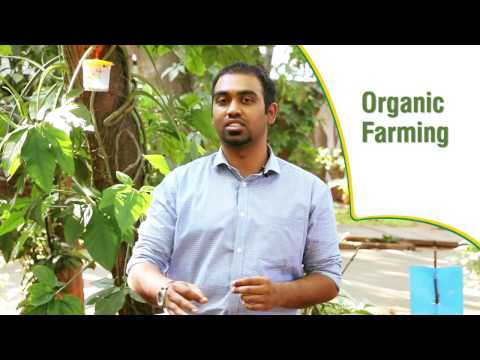 Barrix: Bridging the gap in Organic Sector