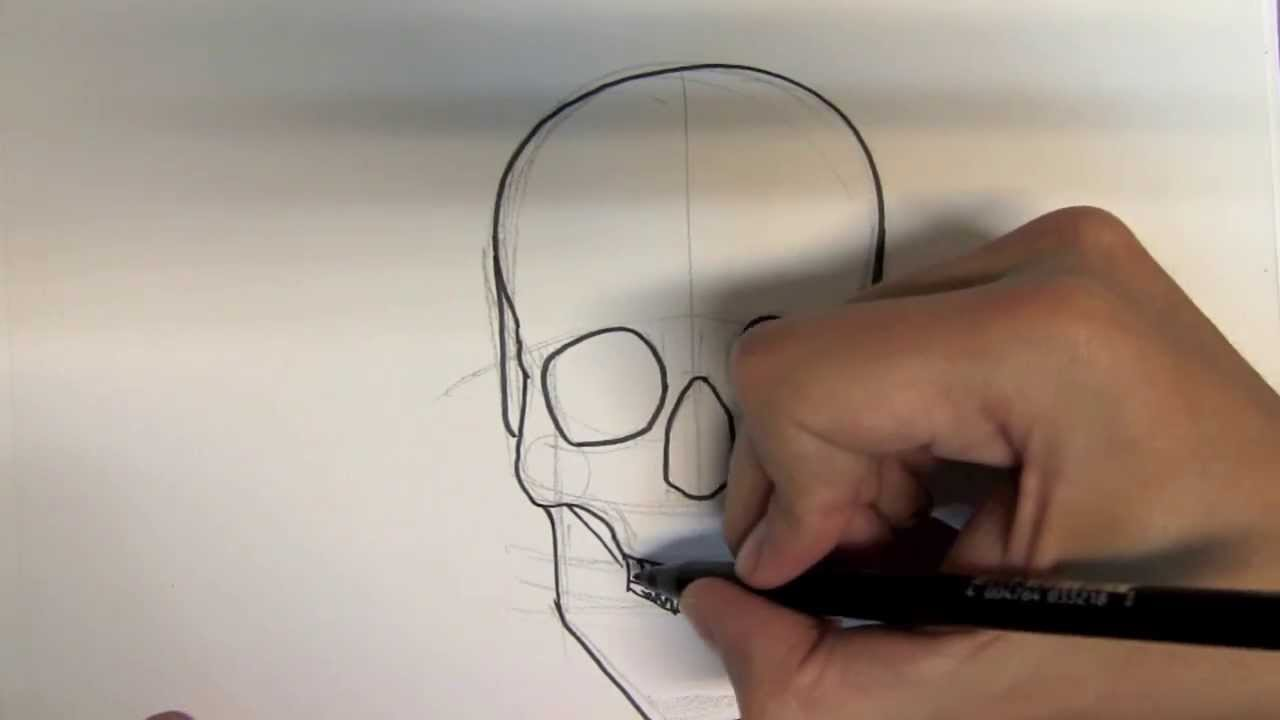 How To Draw A Skull Step By Step  Things To Draw