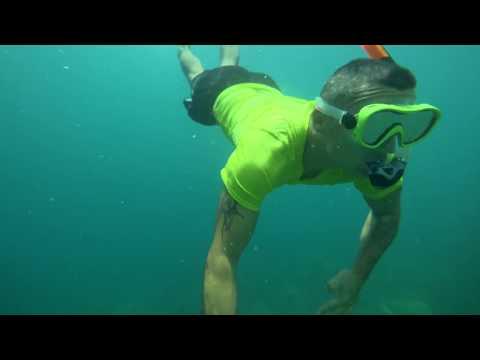 Giant Clam Sanctuary- Taklobo Tours, Samal, Philippines 2018