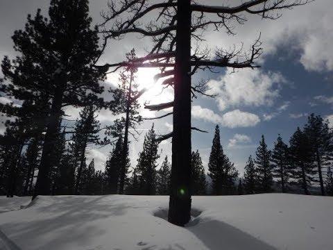 Burnside Lake Winter Trail, Humboldt-Toiyabe National Forest: California
