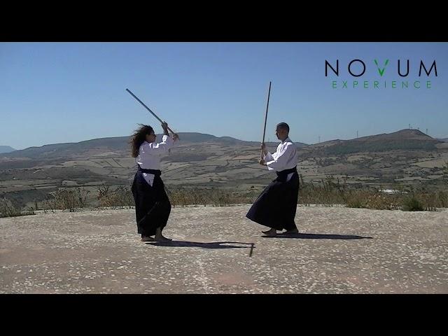 Sanjuichi no Kumi Jo - Aikido Novum Experience - 合氣道 - 合氣杖 - 三十一の組み杖31の組み杖