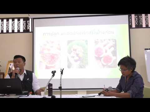 การปลูกมะเดื่อฝรั่งในโรงเรือนโดยคุณอมรจาก Sixty Six Figs Farm