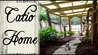 What Happens Inside ~  2 CATIOS ~ Cute and Funny Catio Cats