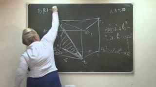 Видеоурок Стереометрия 1 часть