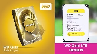 Western Digital GOLD HDD Hard Drive REVIEW