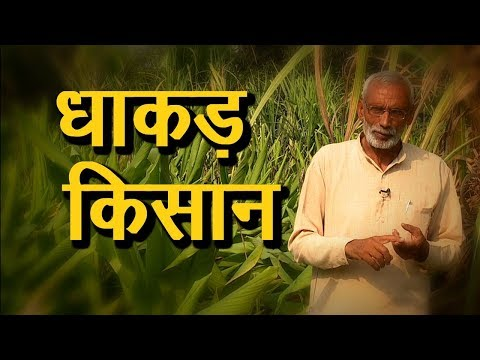 Mixed farming | बिना लागत खेती | Mixed Farming in Hindi | Organic Farming Contributor