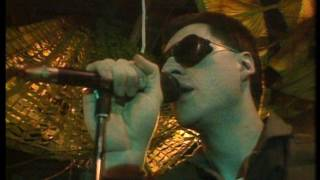 Watch Front 242 No Shuffle video
