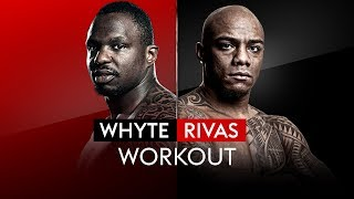 LIVE PUBLIC WORKOUT! | Dillian Whyte vs Oscar Rivas 🥊