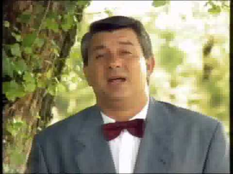 Zoran Gajic - Nisam te se nagledao - (Official Video 1992)