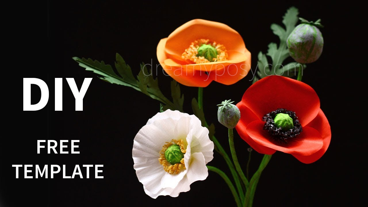 Free Template  How To Make Paper Poppy Flower