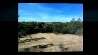 40 Acres Shasta County Land, Redding Land, Real Estate, Property & Redding CA Land For Sale, MLS