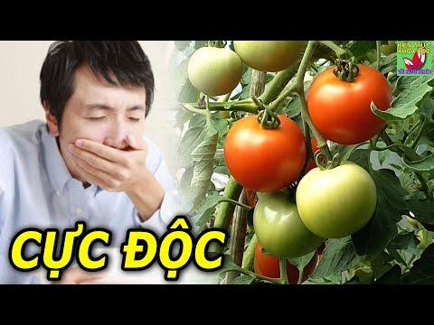CẢNH GIÁC 7 loại thực phẩm dễ gây ngộ độc nếu ăn sai cách