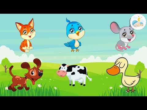 انشودة اصوات الحيوانات للاطفال الصغار   تعليم الاطفال النطق   اغاني اطفال   اسماء حيوانات للاطفال