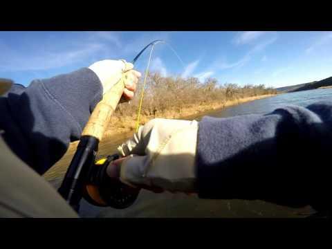 Fly Fishing - Brazos River Trout - 23 Jan 2016