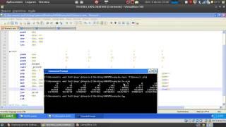 Explotación de Software - Parte XV Sintaxis Intel en Nasm