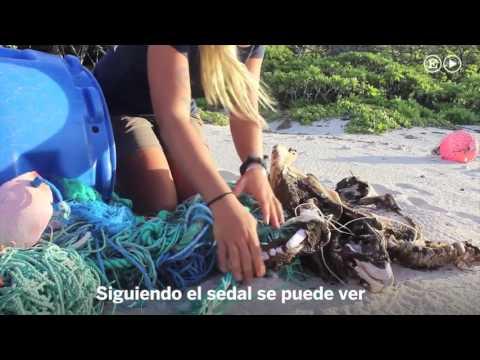 El lugar con más basura del mundo es esta isla del Pacífico sur  Materia