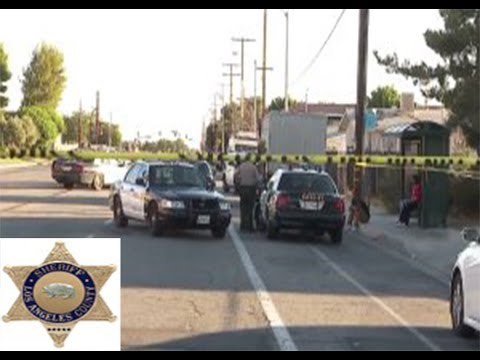 Los Angeles County Deputies Fatally Shoot Teen in Palmdale While Trying to Stop Dog