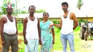 SRI Method of Paddy Cultivation   Bhaskar Padire