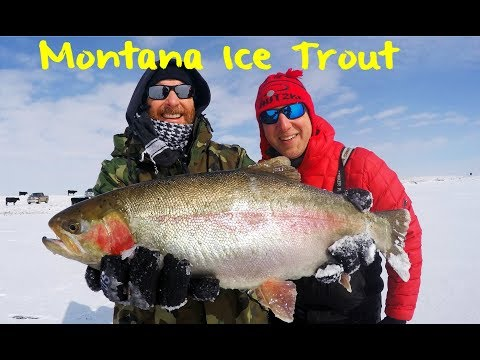 Ice Fishing For Northern Montana Trout