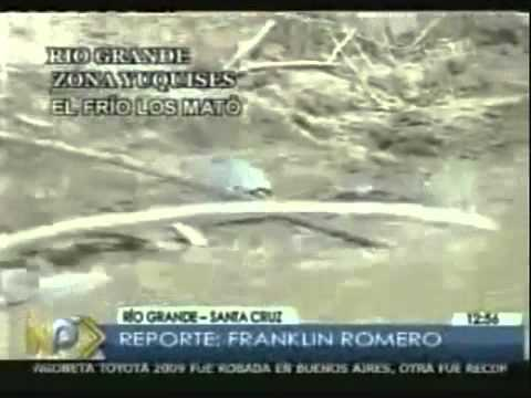 Millions of Dead Fish, Alligators, Turtles Floating in Brazilian Waters!