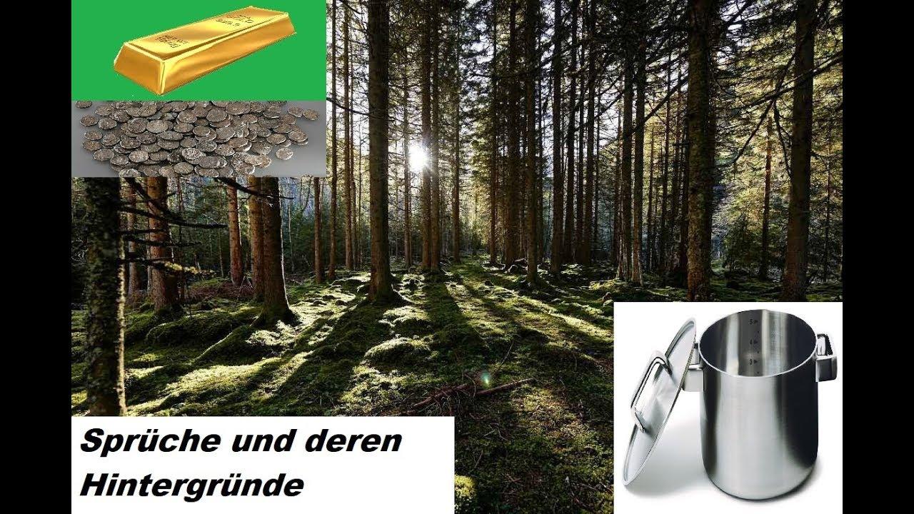 Sprüche Und Deren Hintergründe Den Wald Vor Lauter Bäumen Nicht Sehen