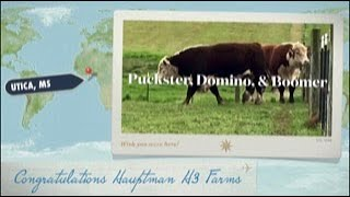 Congratulations Hauptman H3 Farms Purchasing Puckster, Domino, and Boomer