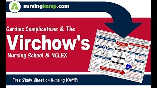 What is a clots and Virchows Triad DVT Deep Vein Thrombosis Nursing KAMP NCLEX 2019