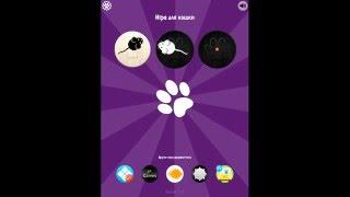 Игра для кошки на Ipad/Iphone