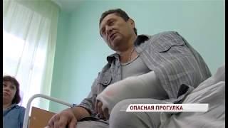 Прокусил бок и разорвал вену: ярославца сильно покусала собака, семья ищет свидетелей