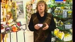 видео Тюльпаны в горшках. Что делать с ними  после выгонки?