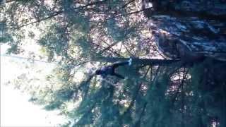 Bungee Jump 100ft - Angel