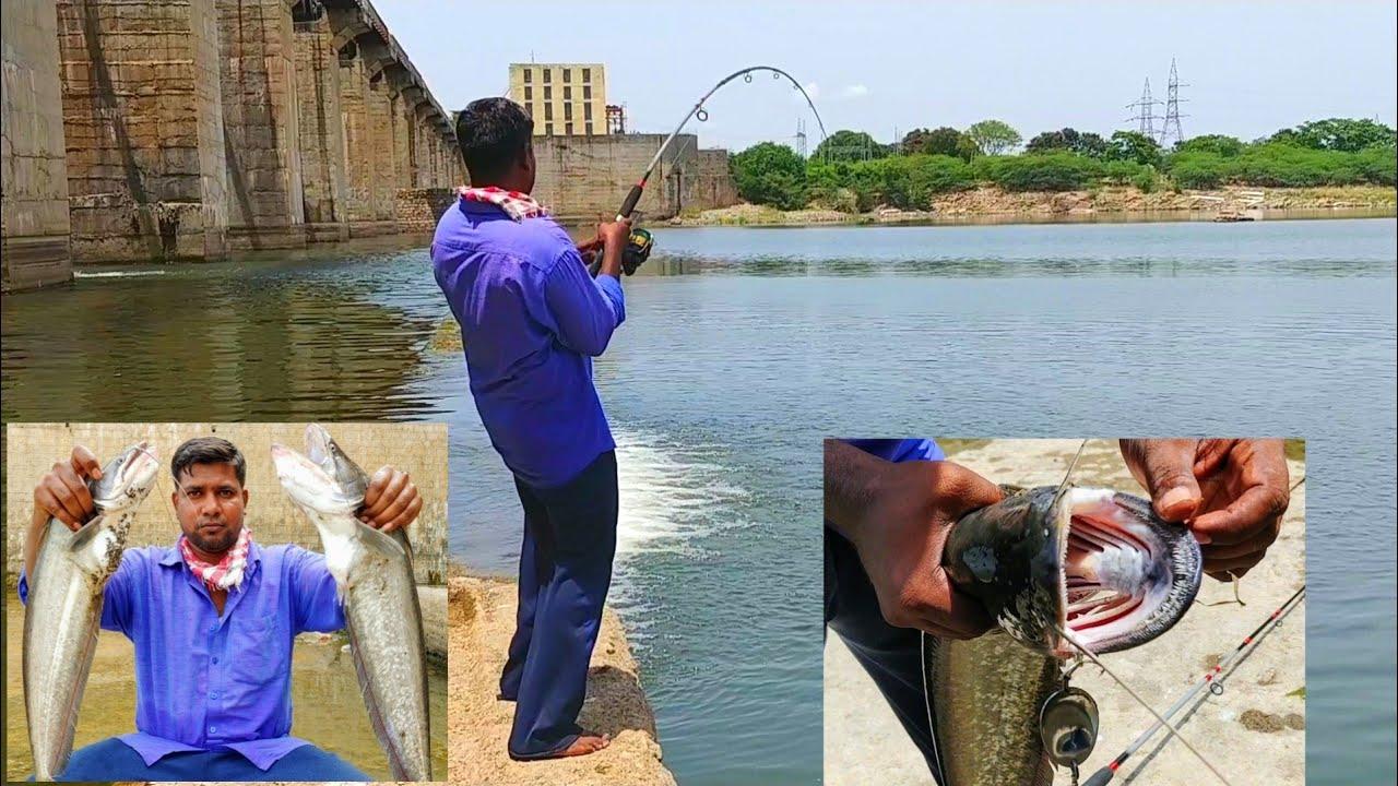 Wallago Attu Fishing|Incredible Fishing|Village fishing vlog
