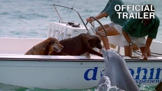 Dolphin kissing dog featured in DOLPHINS Official IMAX Trailer - Music by Sting
