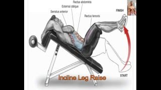 Abs workouts Anatomy 20 Exercises That Building your abs muscle