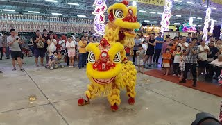 Singapore Lian Xin Dragon and Lion Dance Performances at AMK 龍山岩斗母宫 Nine Emperor Gods Celebrations